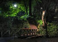 Uc_berkeley_night
